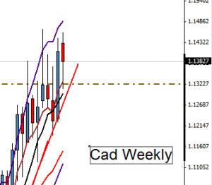 trading daily charts