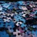 The Profit Puzzle